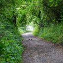 Walk: Harwell, Upton, E. Hagbourne