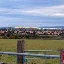 Walk: Harwell round campus